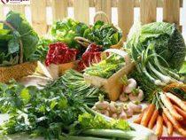 Người mắc bệnh gout nên ăn rau gì?